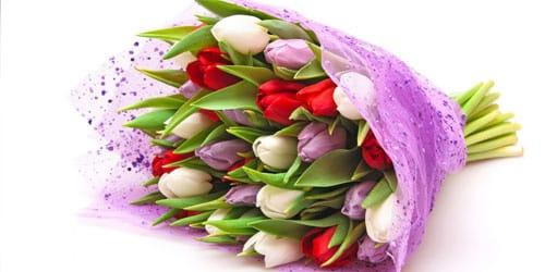 Мне приснились живые цветы заказ цветов через интернет магазин в г вольске