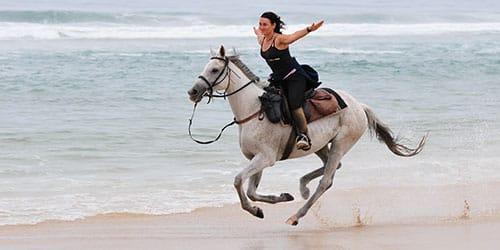 скакать сонник на чёрной лошади