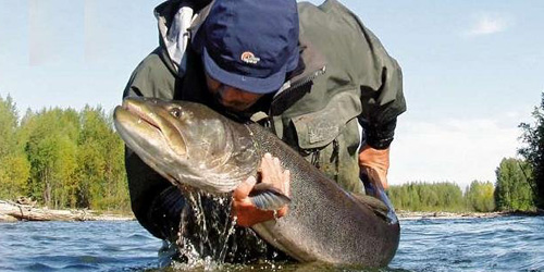 Сонник К Чему Во Сне Ловить Рыбу На Удочку