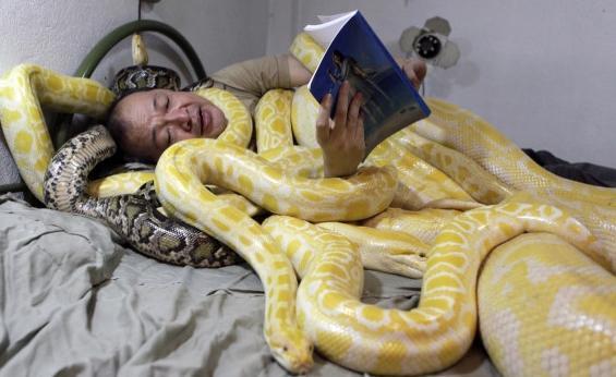 Змея снится к свадьбе